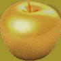 Gold Apple Final